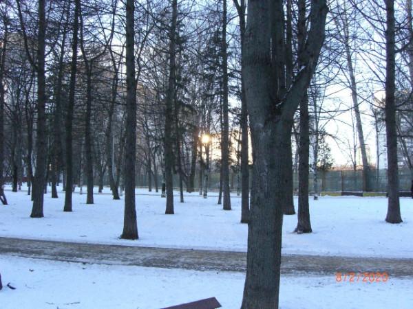 Сквер между домами в Давыдково