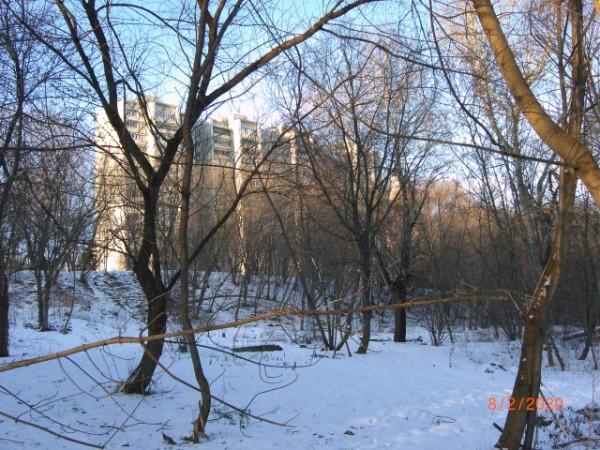 Высокий дом на Давыдковской улице. Вид с реки
