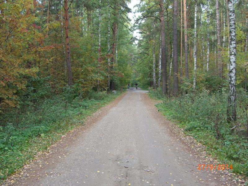 В Рублёвском лесу по пути из Троице-Лыково в Крылатское