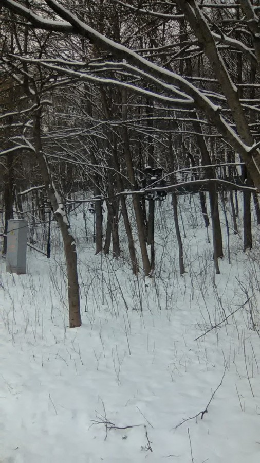 Недалеко от набережной Ленинских гор у забора дома приёмов и особняков