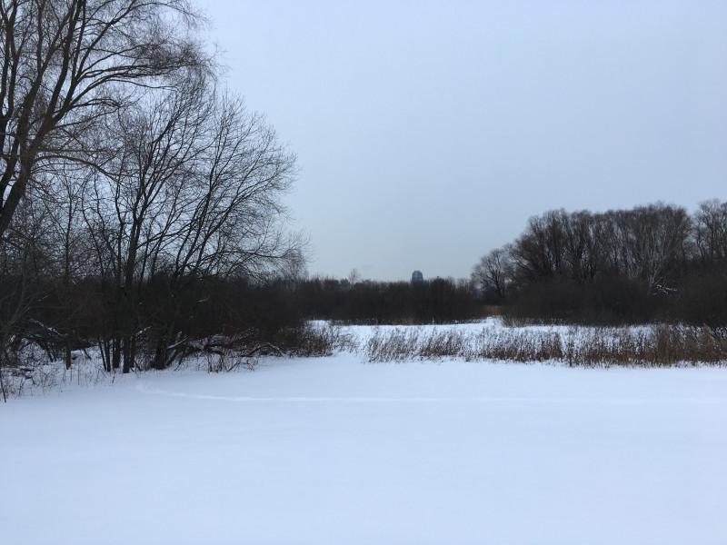 12. Глубокий снег на Щукинском полуострове