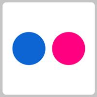 flickr-dots-chiclet
