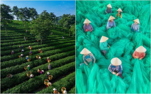Вьетнам на аэрофотоснимках Пэма Хай Трунга