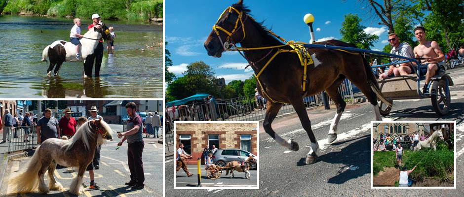 Цыгане игнорируют официальные запреты и приезжают на лошадиную ярмарку Эпплби