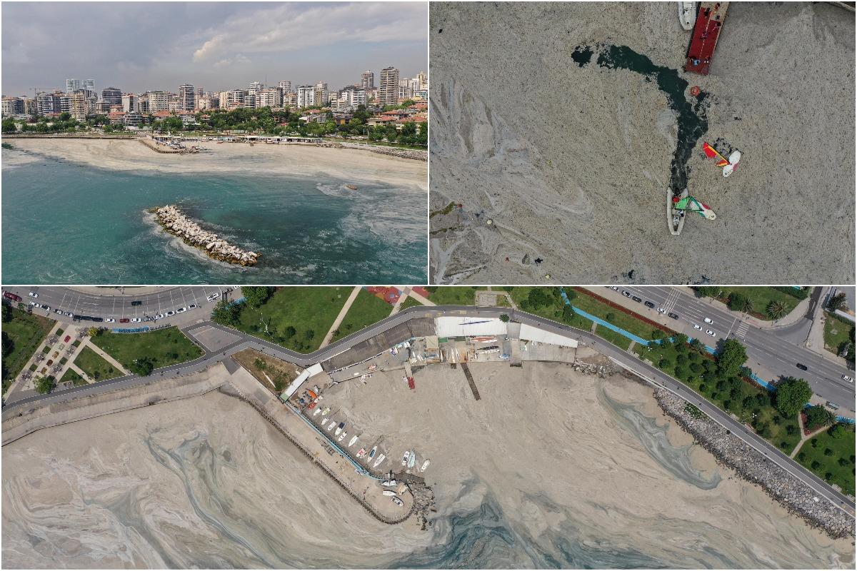 Мраморное море в Турции спасают от «морских соплей»