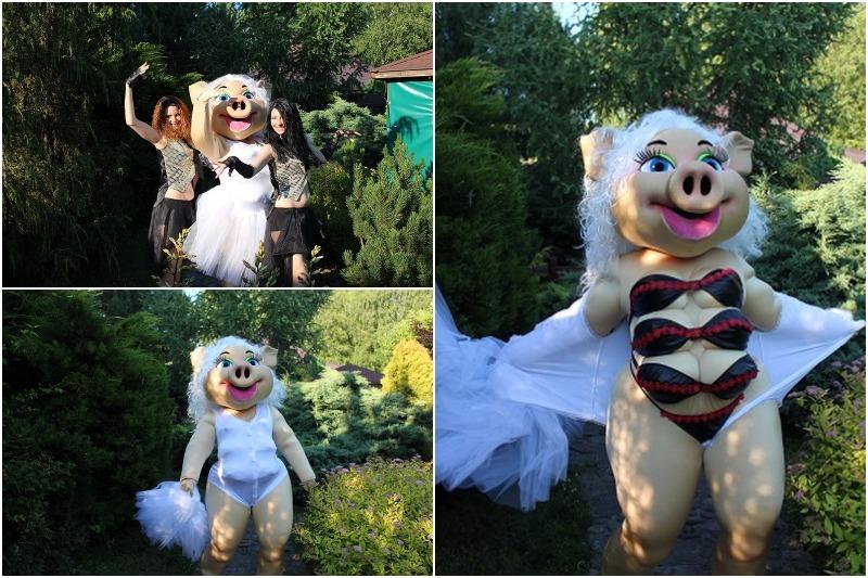 Незабываемое стриптиз-шоу от свинки Каролины предлагает детский центр во Львове
