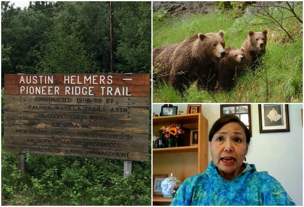 На Аляске туристка пропала на сутки, пережила нападение медведя и вышла к людям