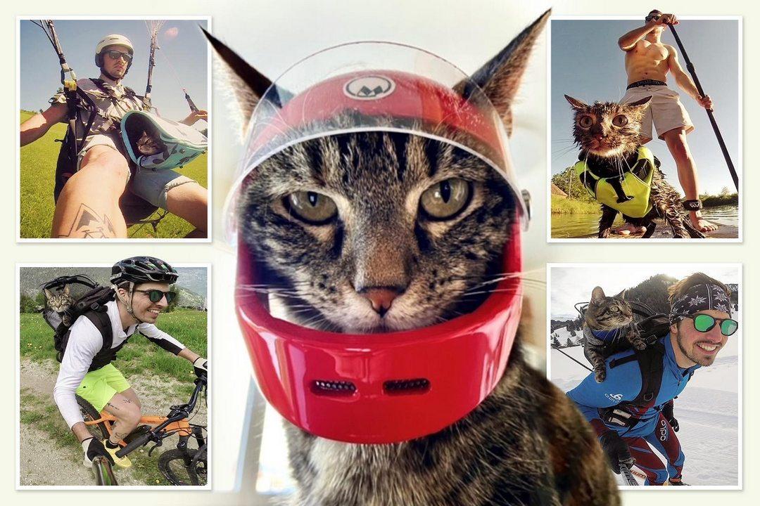 Кошка составляет компанию своему хозяину в экстремальных приключениях