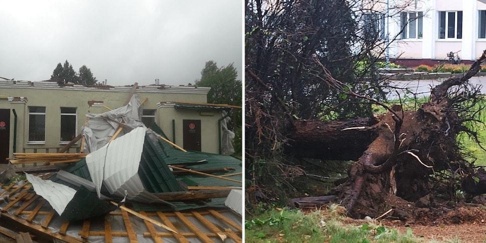 На Витебщине прошел ураган: фото пострадавших районов