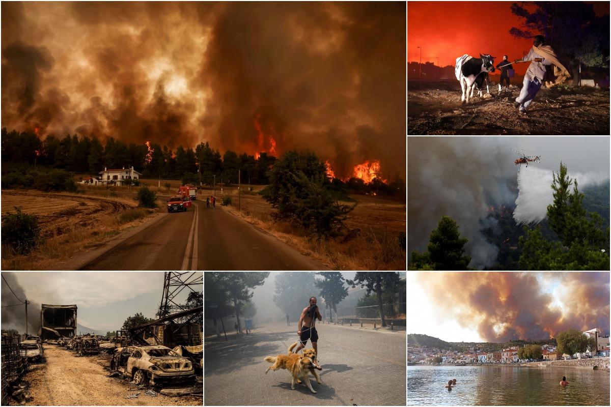 По всей Греции бушуют лесные пожары