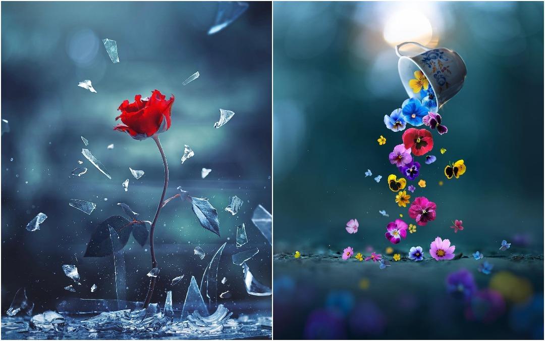 Красивые макрофото Ашрафула Арефина