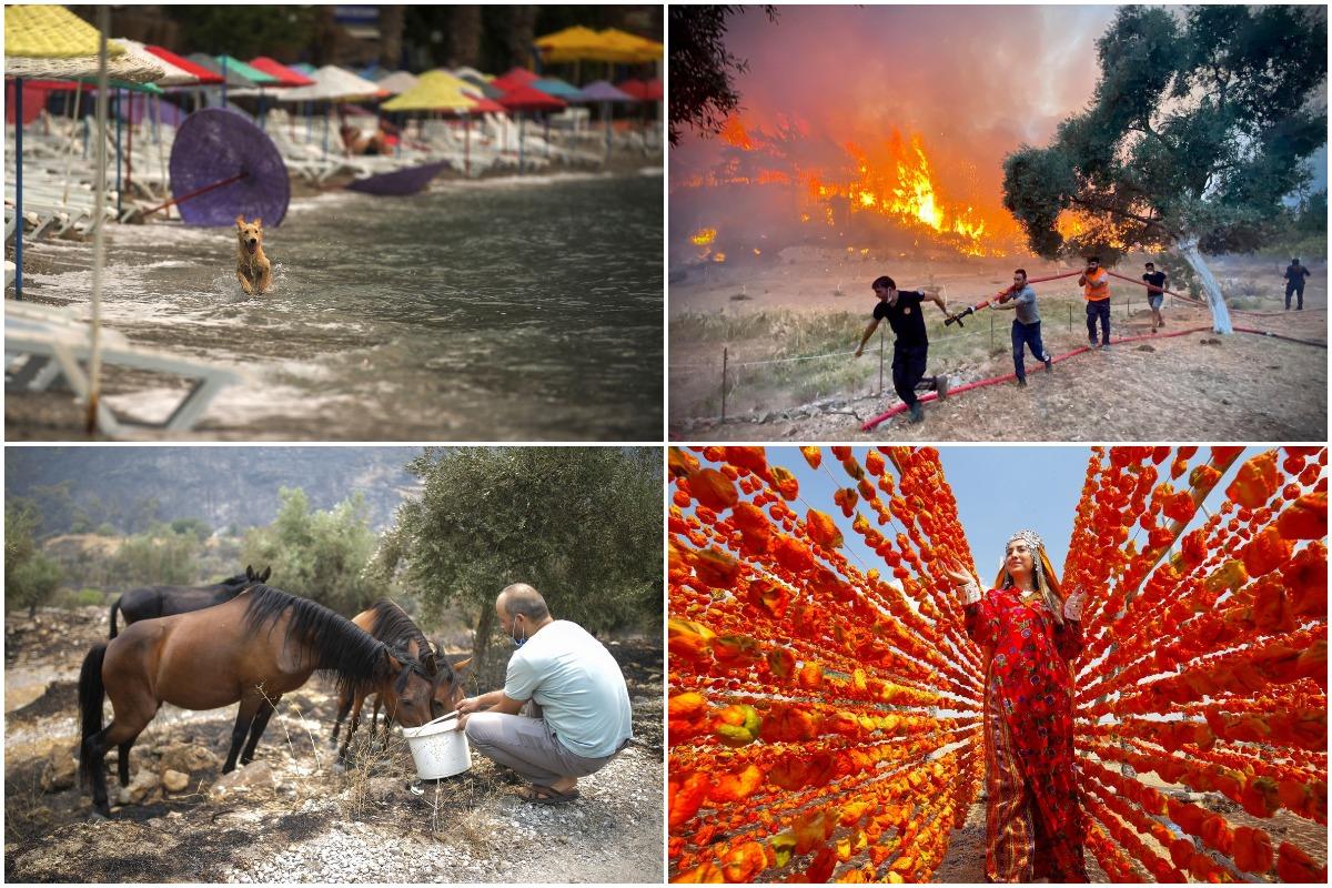Августовские фотографии из Турции
