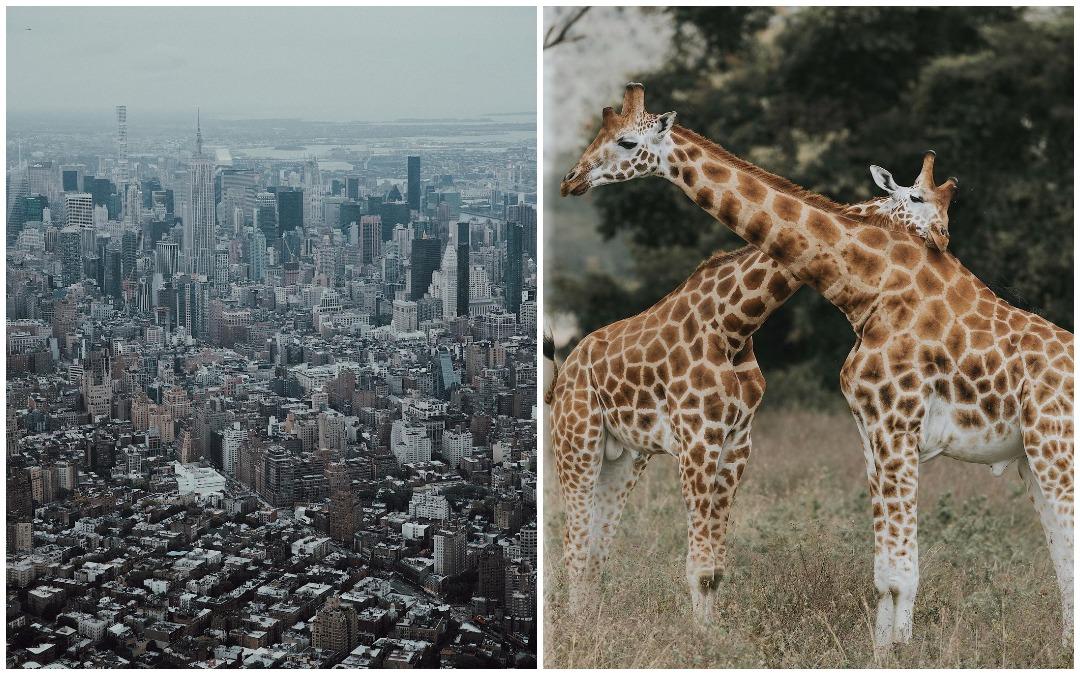 Захватывающие снимки из путешествий Александра Джейсона