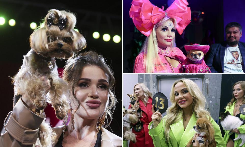 Moscow pet awards: гламурные российские любители собак продемонстрировали своих драгоценных пёсиков