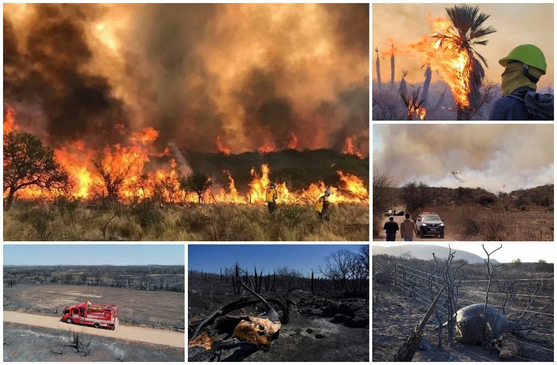 Шокирующие кадры большого лесного пожара на севере Кордовы
