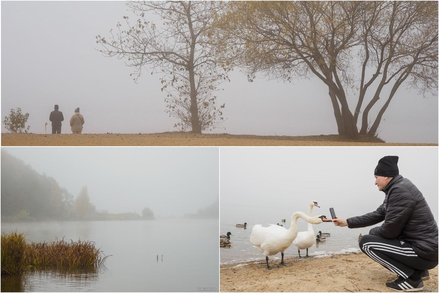 Беларусь накрыл туман: фоторепортаж про птиц, людей и тени