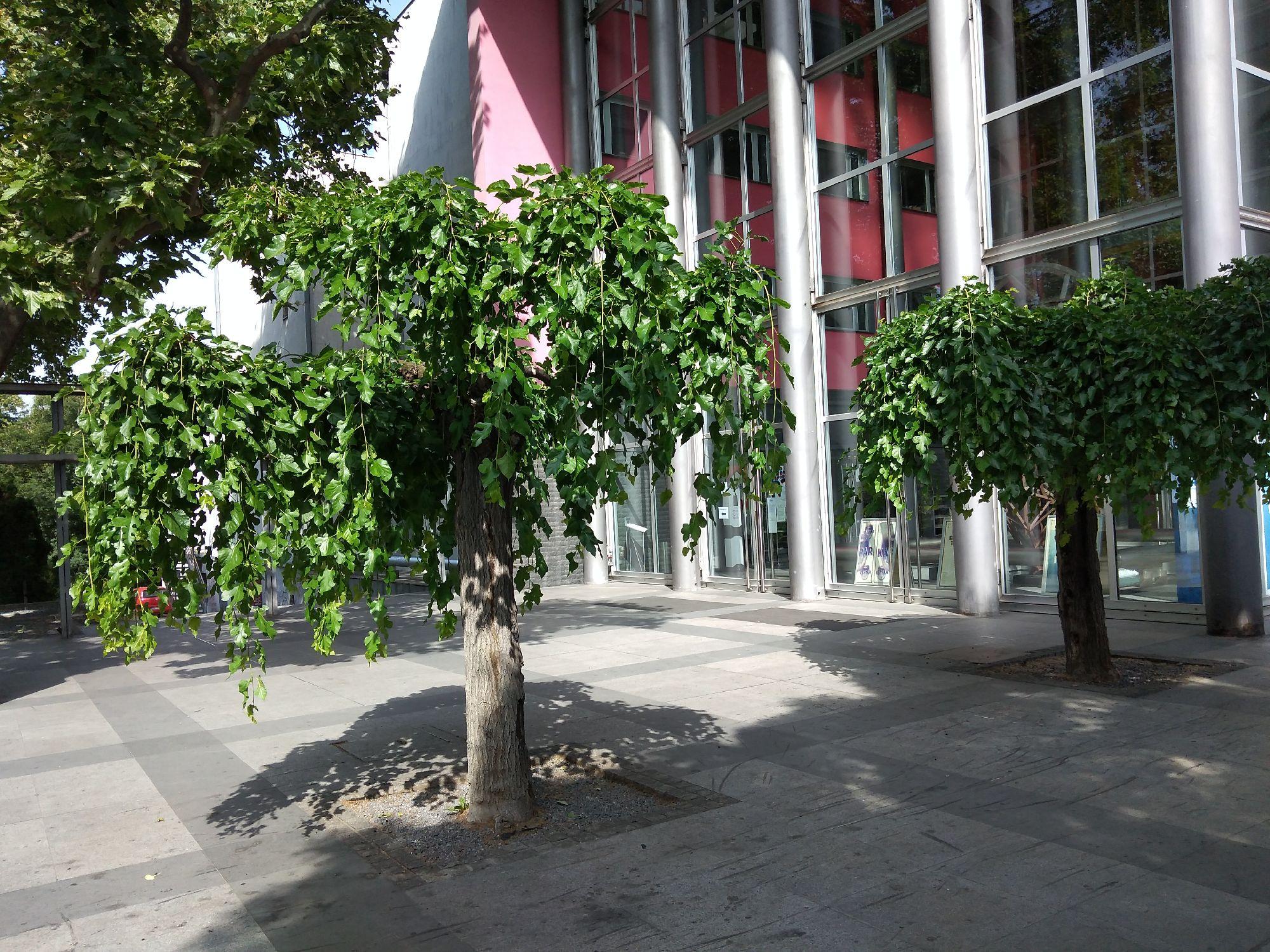 Позориште ЈДП / Театар ЮДТ (Югославский драматический театр)
