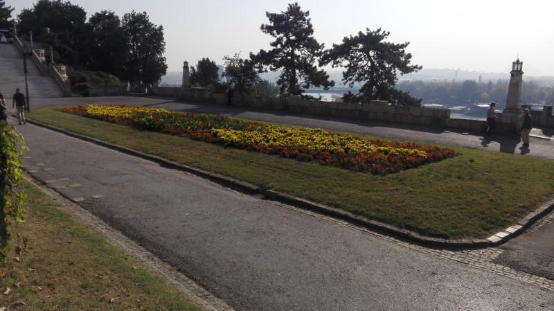 Цвеће.