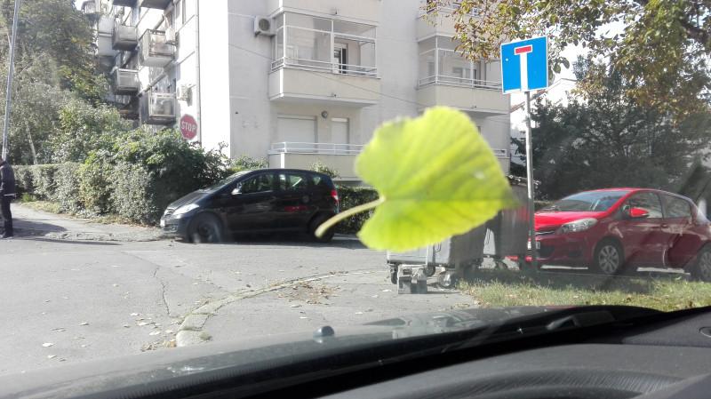 Паркинг/Парковка