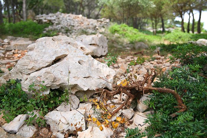 Национальный парк Корнаты