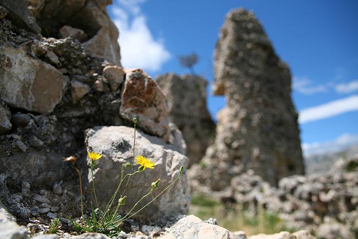 Руины башни Вечка