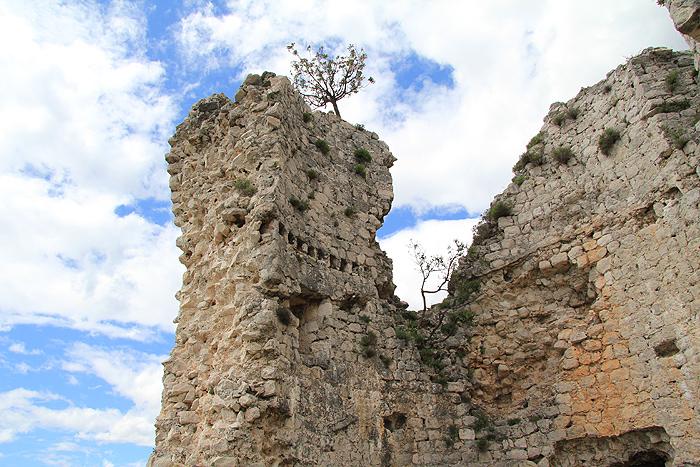 Руины Večka kula