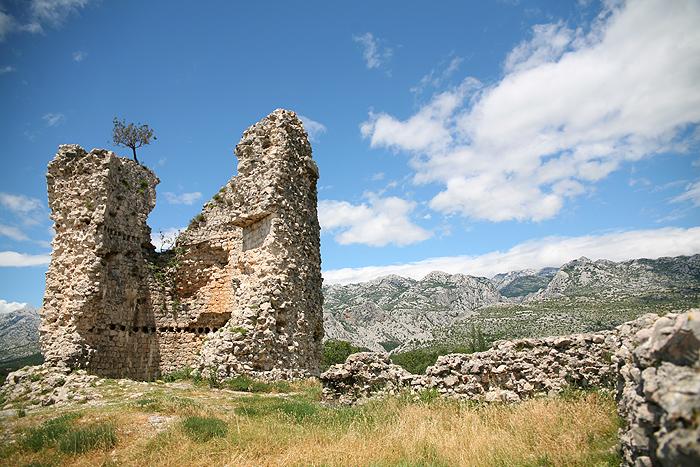 Башня Вечка