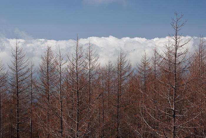 Над облаками...