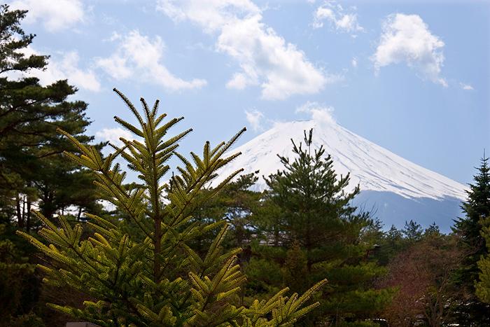 Вид на Фудзи из парка Хаконэ