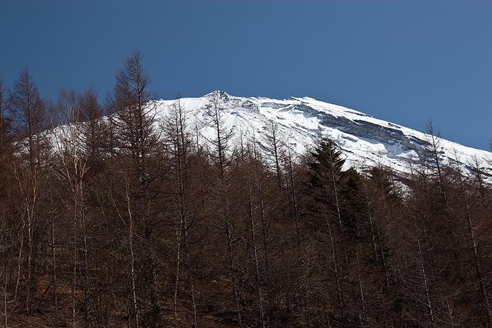 Снежная вершина Фудзи-сама