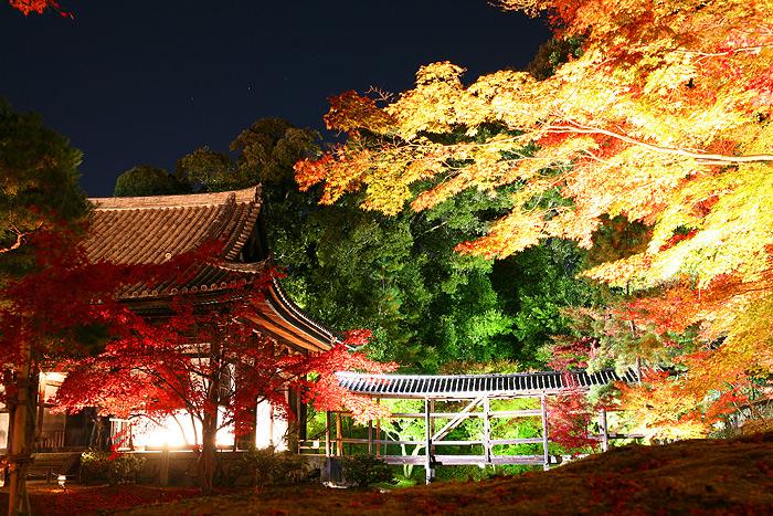 Мост к Павильону Любования Луной в Кодай-дзи, Киото