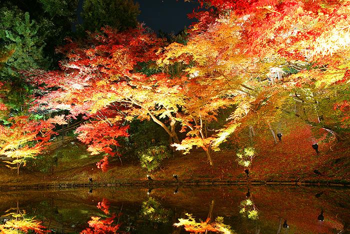 Озеро в саду храма Кодай-дзи, Киото