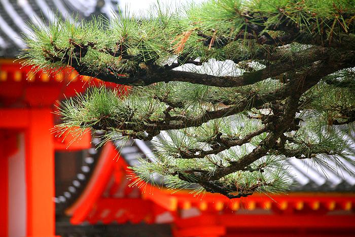 Храм Сандзюсангэндо, Киото