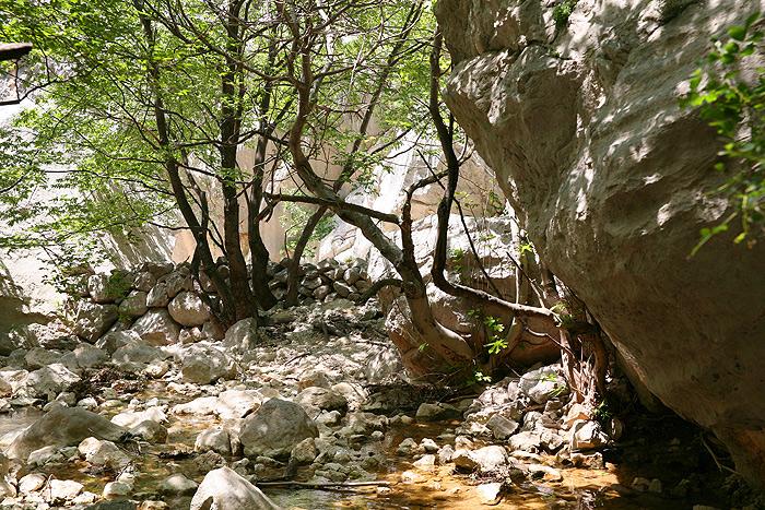 Место съемок в Большом каньоне