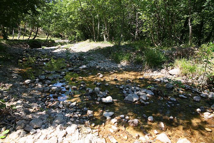 Национальный парк Пакленица