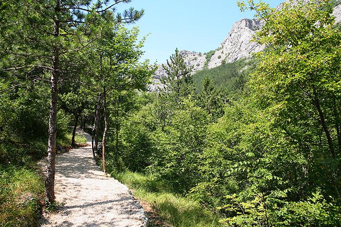 Лесная тропа, параллельная основной дороге по другую сторону реки