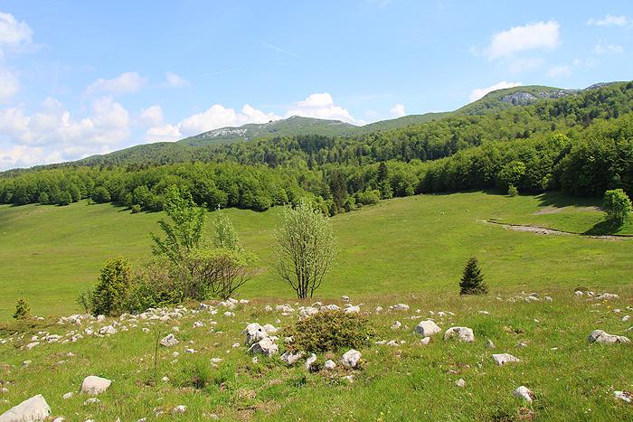 Пейзажи Платака