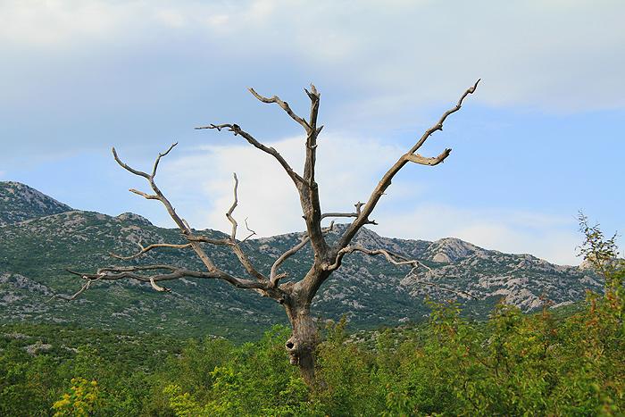 Дикий запад в хорватских пейзажах