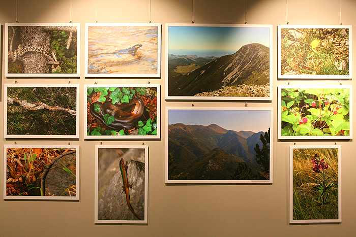 Фотовыставка в «Подземном городе Пакленица»
