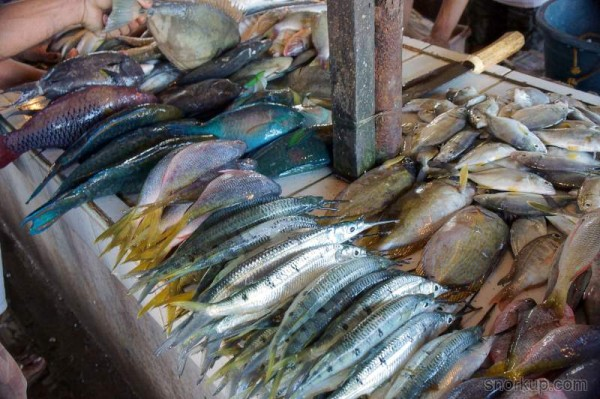Рыба на прилавках Coron public market