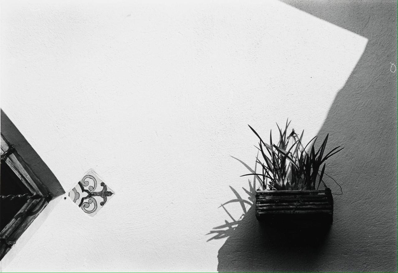 Ralston Crawford (1906 - 1978) Wall, Window, Plant, Spain, 1975