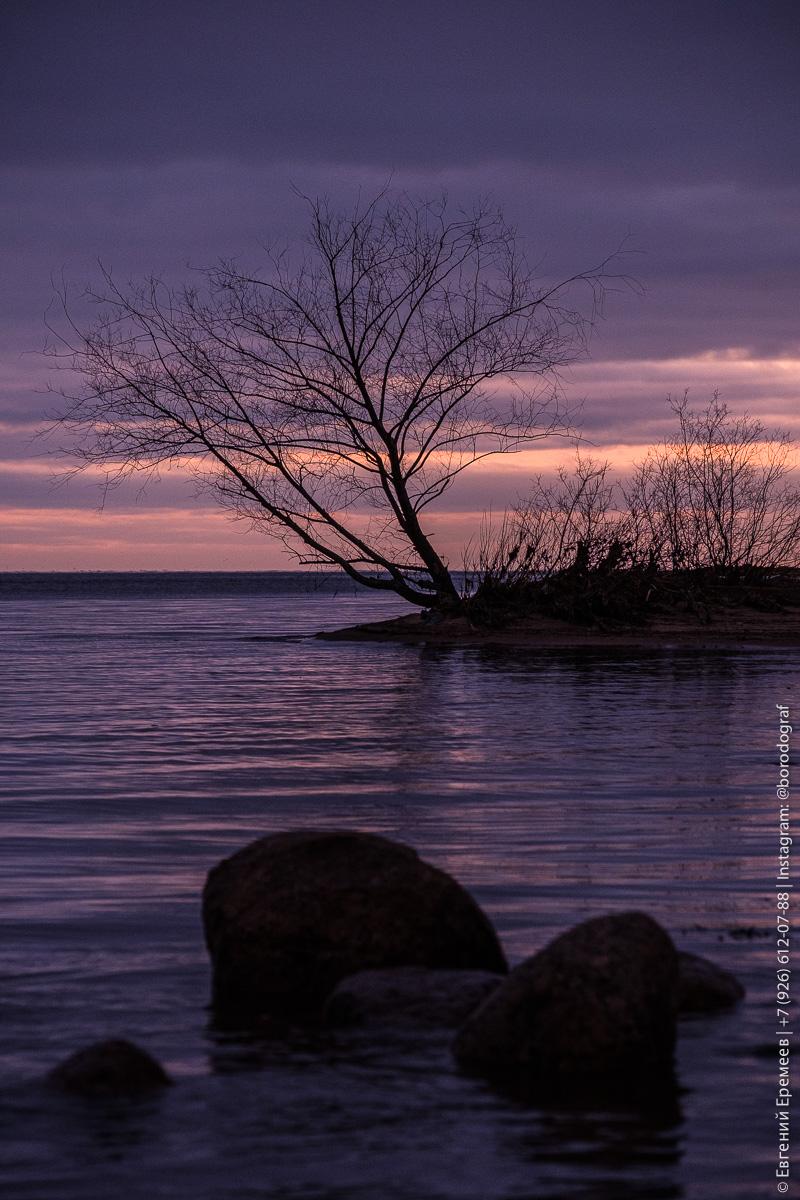 Финский залив, Лахта