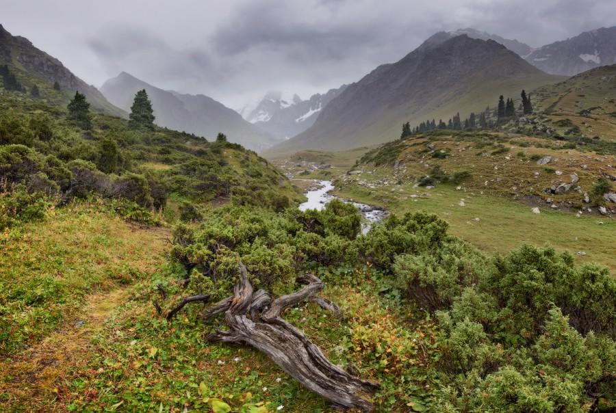 Долина реки Телеты