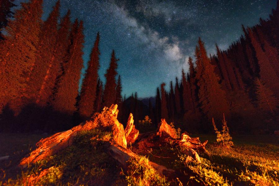 Киргизская ночь