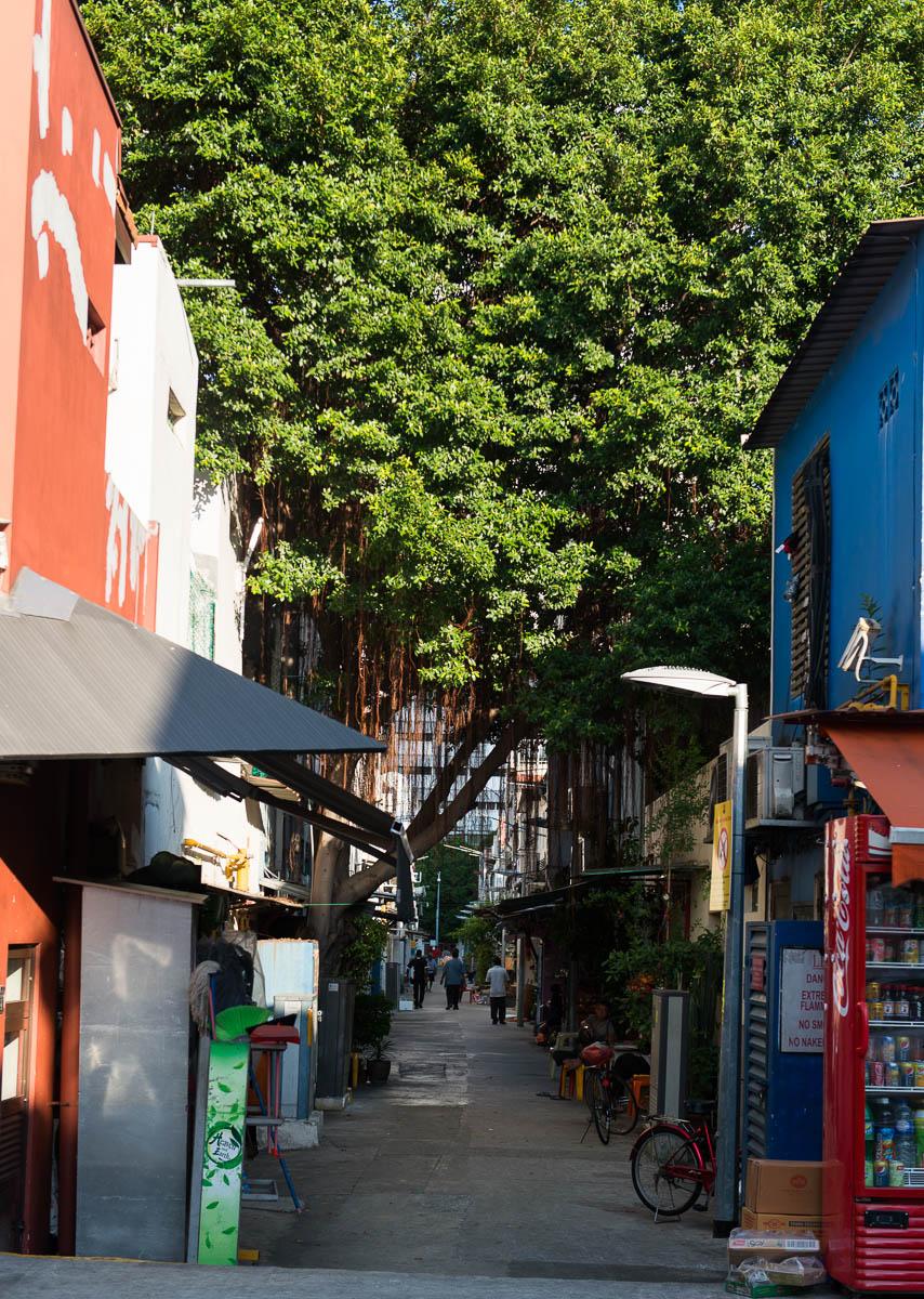 chinatown-singapore-10