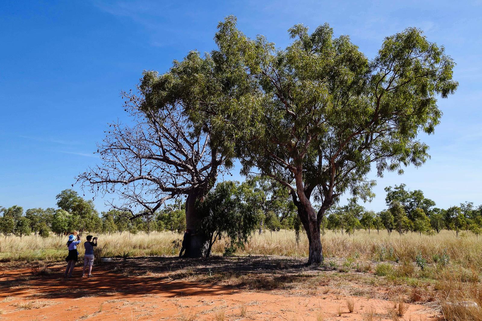 kimberley-australia-15