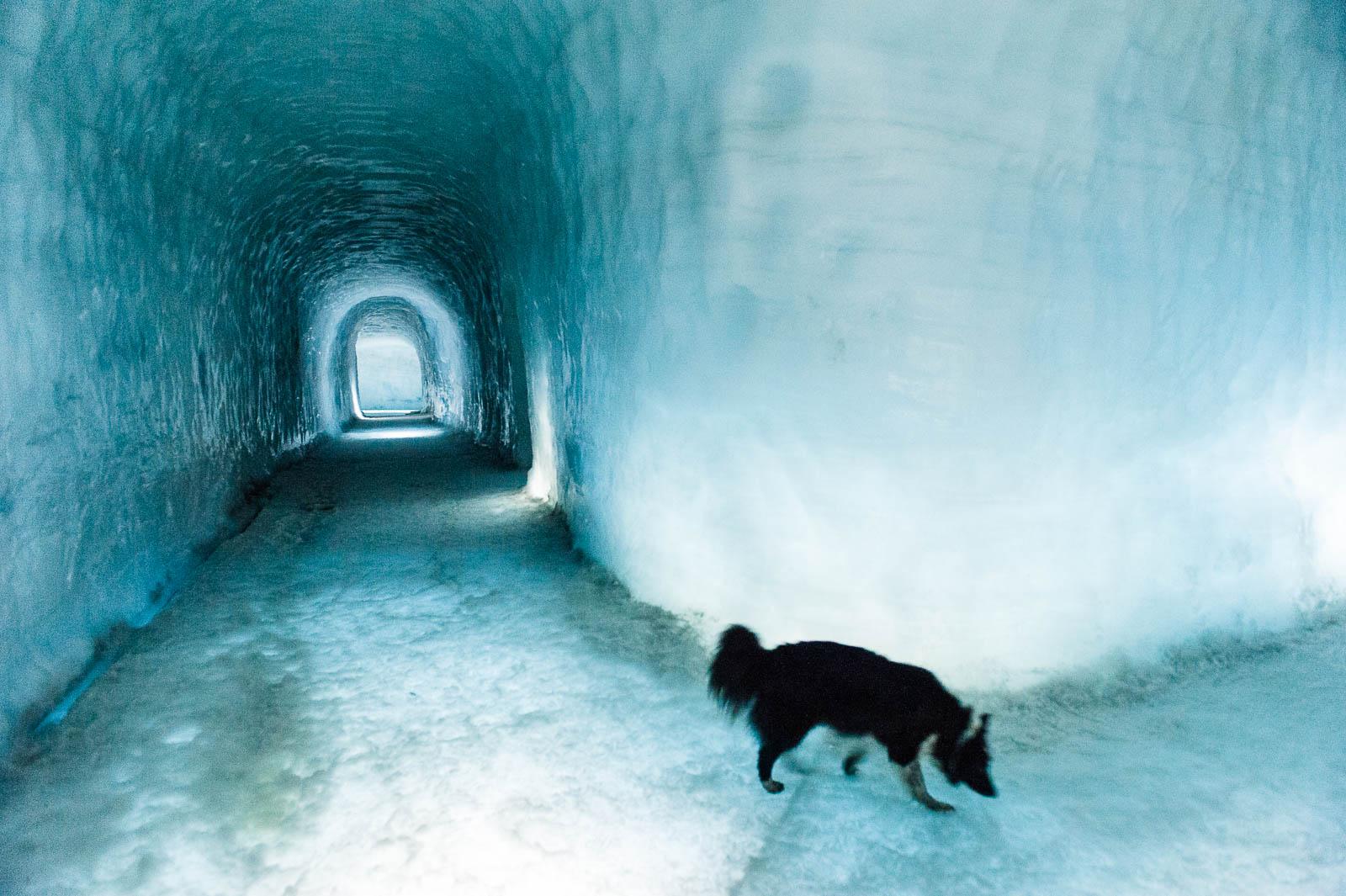 iceland-glacier-8