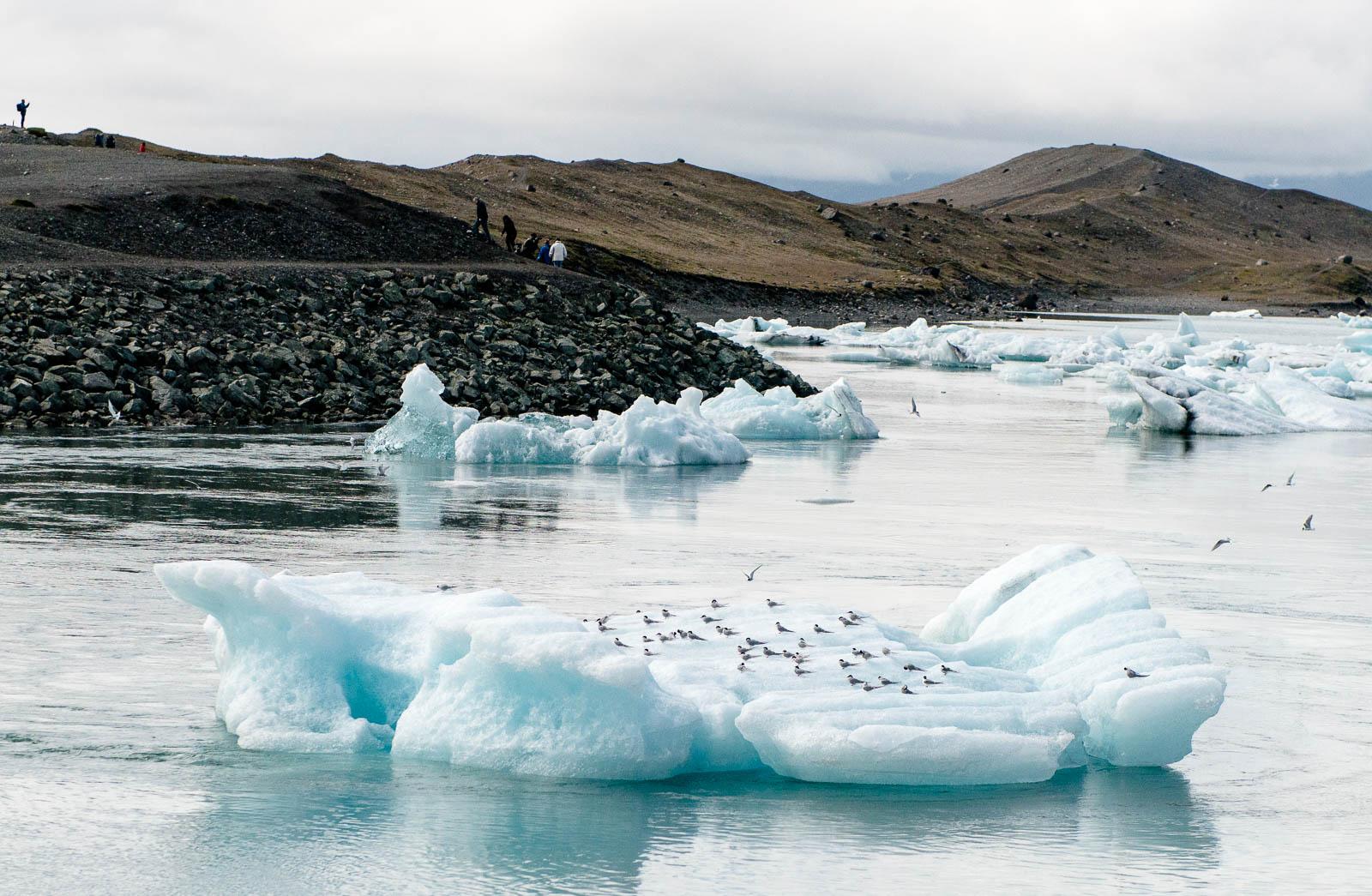 iceland-glacier-22