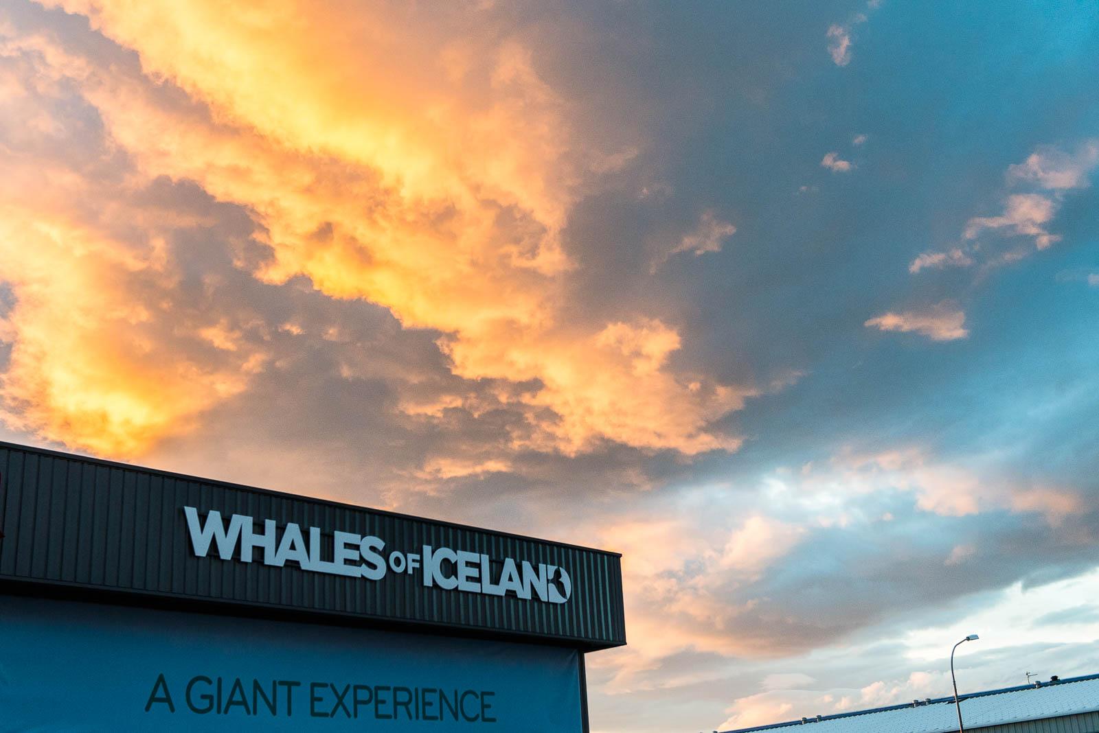 iceland-reykjavik-10