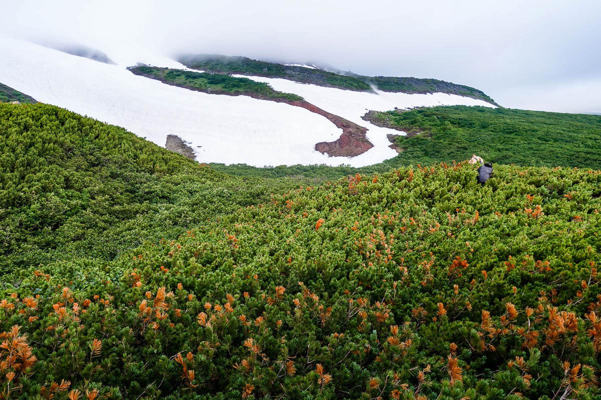 kamchatka-ilyinsky-volcano-32
